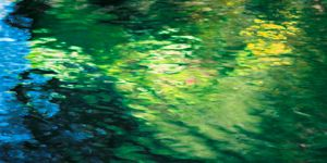 color-water-reflection-green-jens-rubbert-adobergb
